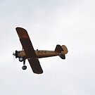 Yellow Biplane over head by G. Cobble