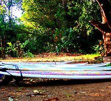Surf Garden by Danielle Robidoux