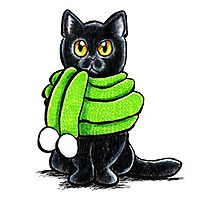 Black Cat in Wooly Green Scarf Photographic Print
