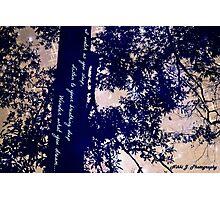 Half Moon with Haiku Photographic Print