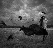 Birds by Kim Vance