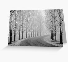 Barren Trees in Winter Greeting Card