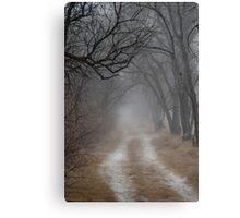 Dirt Road and Trees in the Fog Canvas Print