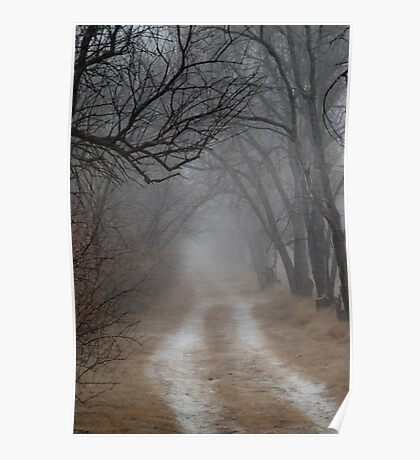 Dirt Road and Trees in the Fog Poster