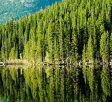 Mountain Lake Reflections by Photopa