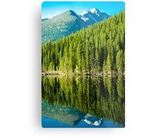 Mountain Lake Reflections Metal Print