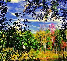 Fall Once Again ! by Elfriede Fulda