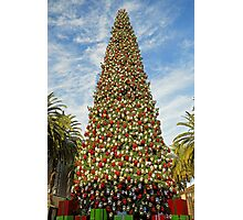 Fashion Island Holiday Centerpiece  Photographic Print
