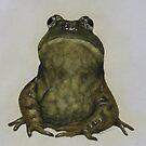 frog by diane nicholson