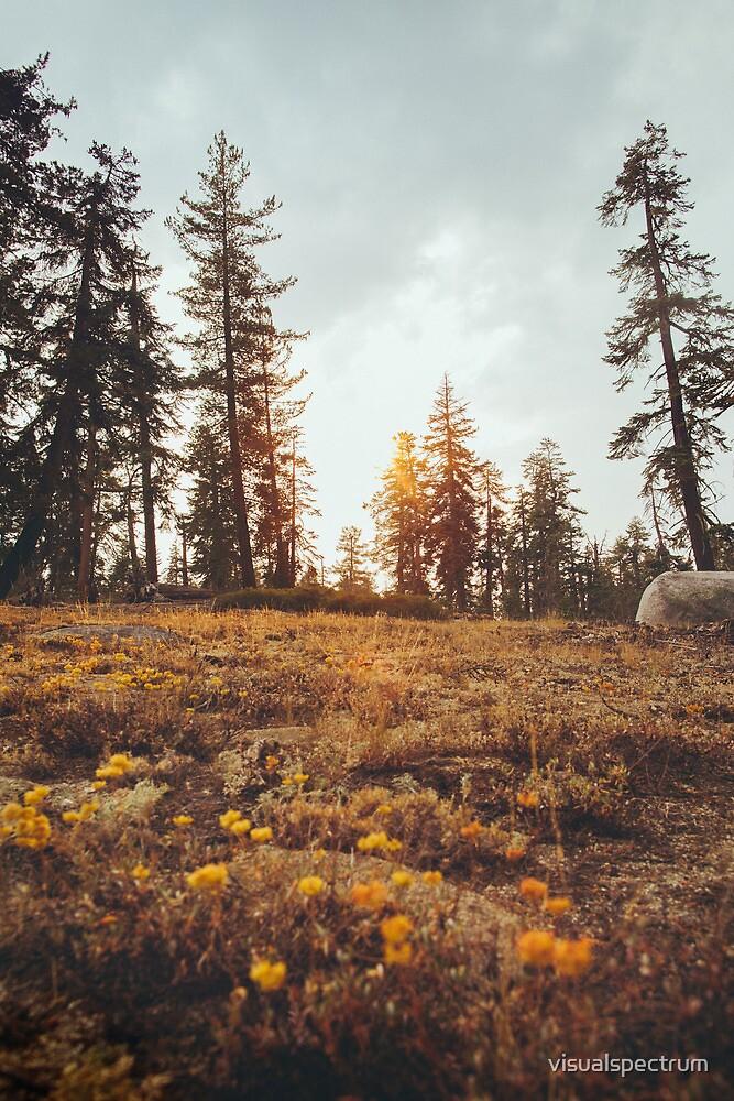 Yosemite Sunset by visualspectrum