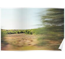 Dry Sierra Nevada Landscape Poster