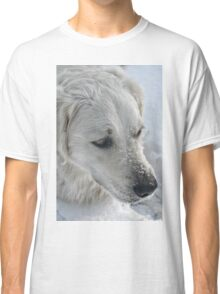 Just a Pair of Pretty Eyes and a Snow-covered Muzzle Classic T-Shirt