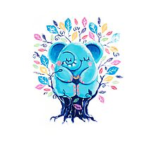 Hiding Place - Rondy the Elephant Sitting In a Tree Photographic Print