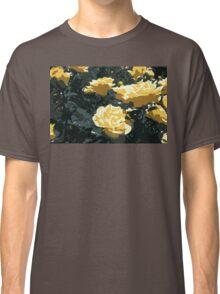 Yellow Roses Classic T-Shirt