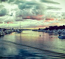 Falmouth Harbor Cape Cod by Elizabeth Thomas