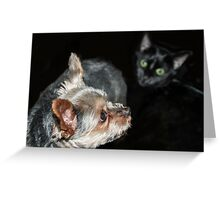 """""""What is that behind me?"""" Greeting Card"""