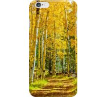 Fall Aspens iPhone Case/Skin