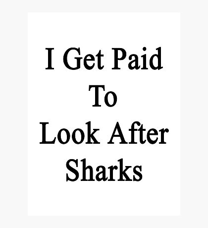 I Get Paid To Look After Sharks Photographic Print