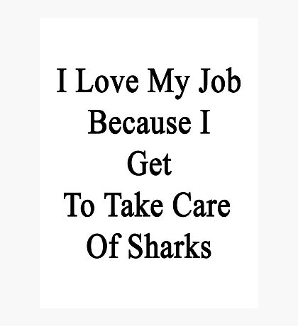 I Love My Job Because I Get To Take Care Of Sharks  Photographic Print