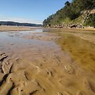 Estuary @ Ettalong Beach by Kymbo