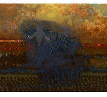 elephant 11 by David  Kennett