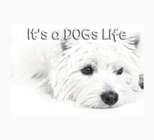 It's a Dog's Life T-shirt by Love Through The Lens