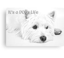 It's a Dog's Life Portrait  Canvas Print