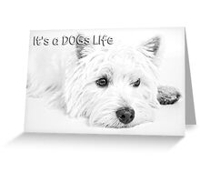 It's a Dog's Life Portrait  Greeting Card