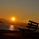 Sunset Bench  by tmtphotography