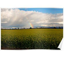 Spring on the farmlands Poster