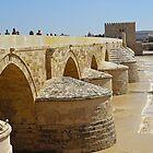 Roman Bridge - Cordoba by MikeSquires