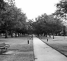 Oak Parkway by njordphoto