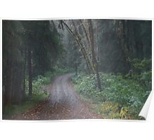 Cottonwood Campground Road Poster