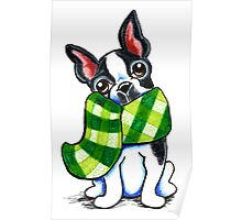 Boston Terrier Happy Plaid Scarf Poster