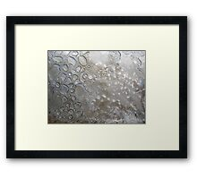 Even the Poorest Thing Shines II Framed Print