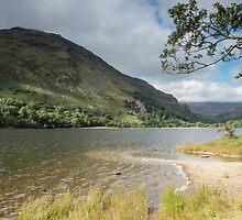 Beside the lake by Judi Lion