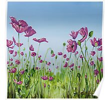 Field of Pink Poppies Poster