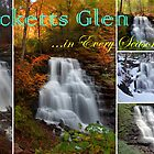 Ricketts Glen ...In Every Season *NEW for 2014!* by Gene Walls