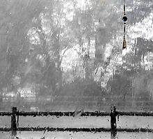 It's Raining Today by trueblvr