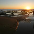 Sunrise - Mona Vale Beach, Sydney (A) by Jane Wilkinson-Franssen