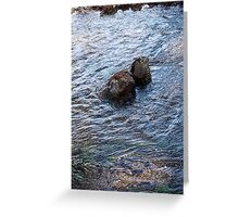 Clear Blue Rush Greeting Card