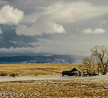 Old Cabin in the Plains  by Photopa