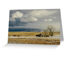 Old Cabin in the Plains  Greeting Card
