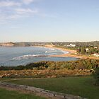 View over Mona Vale Beach, Sydney by Jane Wilkinson-Franssen
