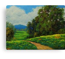 Path To Solitude Canvas Print