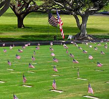 "National Memorial Cemetery of the Pacific (Punchbowl)  Memorial Day 2013 by Edmond J. [""Skip""] O'Neill"