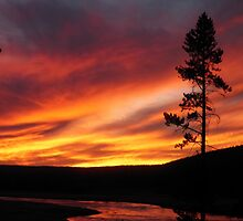 Sunset at Yellowstone at Firehole River by Steve Upton