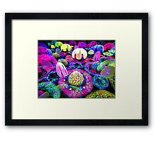 song of the jellyfish Framed Print