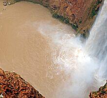 Man Facing Mooney Falls  by Robert Meyers-Lussier