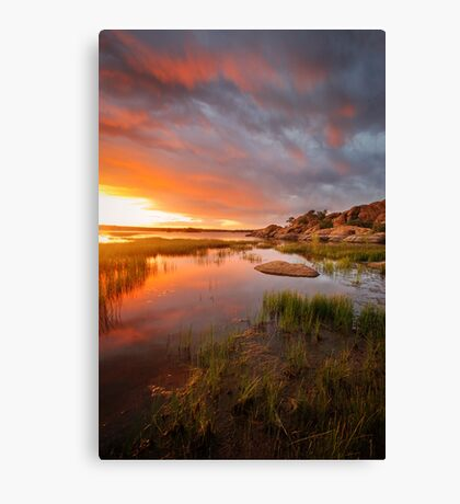 Just Then Canvas Print